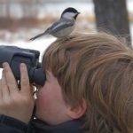 North American Birding