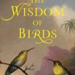 Wisdom of birds
